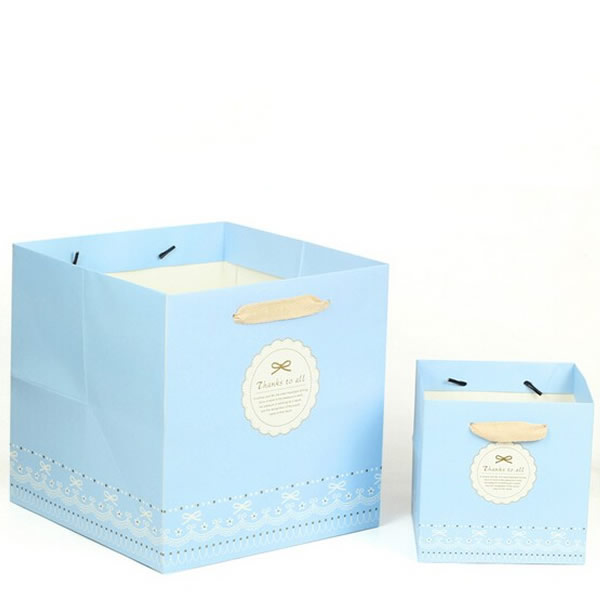 Sky Blue Simple Gift White Card Paper Bag Customization